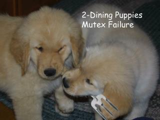 2-Dining Puppies  Mutex Failure