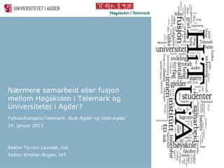 Nærmere samarbeid eller fusjon mellom Høgskolen i Telemark og Universitetet i Agder?