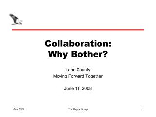 Collaboration: Why Bother?