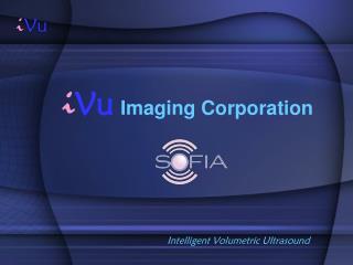 i Vu Imaging Corporation