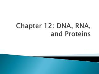 Chapter 12:  DNA , RNA, and Proteins