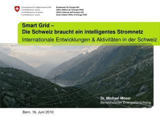 Smart Grid   Die Schweiz braucht ein intelligentes Stromnetz Internationale Entwicklungen  Aktivit ten in der Schweiz