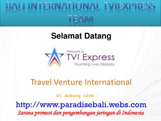 Travel Venture International