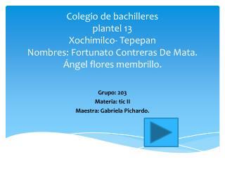 Grupo: 203 Materia: tic II Maestra: Gabriela Pichardo.