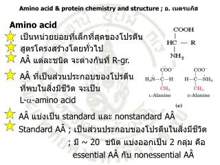 AÂ  ที่เป็นส่วนประกอบของโปรตีน ที่พบในสิ่งมีชีวิต จะเป็น L- - amino acid