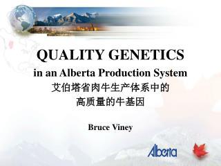 QUALITY GENETICS in an Alberta Production System 艾伯塔省肉牛生产体系中的 高质量的牛基因 Bruce Viney