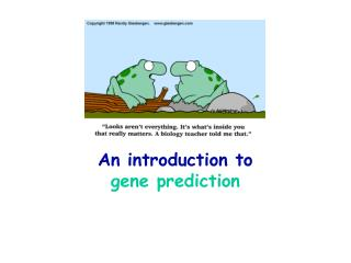 An introduction to  gene prediction