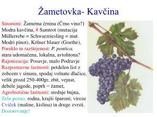 �ametovka- Kav?ina
