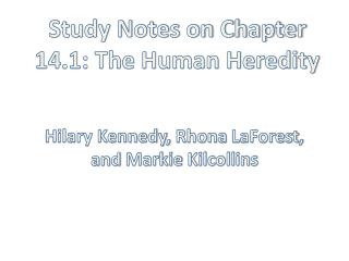 Study Notes on Chapter 14.1: The Human Heredity