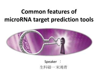 Common features  of  microRNA  target prediction tools