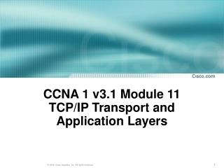 CCNA 1 v3.1 Module 11  TCP/IP Transport and Application Layers