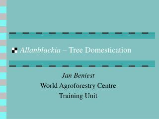 Allanblackia –  Tree Domestication