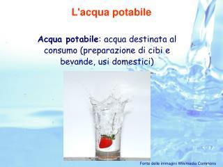Acqua potabile : acqua destinata al consumo (preparazione di cibi e bevande, usi domestici)