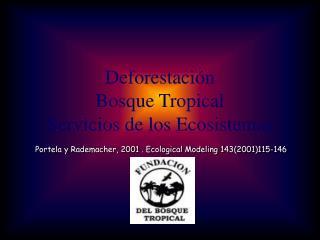 Deforestación Bosque Tropical Servicios de los Ecosistemas