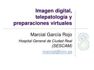 Imagen digital, telepatología y  preparaciones virtuales