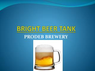 Bright Beer Tank for beer brewing