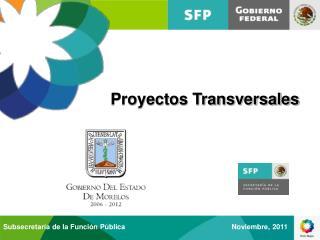 Proyectos Transversales