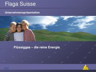 Flaga Suisse