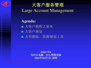 大客户服务管理 Large Account Management