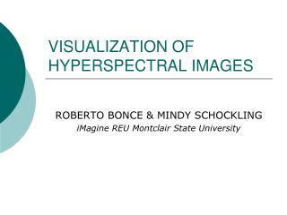 VISUALIZATION OF HYPERSPECTRAL IMAGES