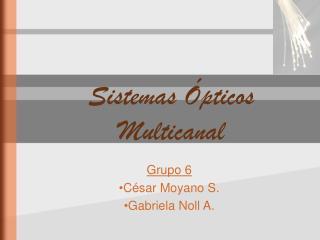 Sistemas Ópticos Multicanal