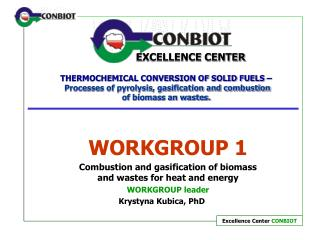 WORKGROUP 1 Combustion and gasification of biomass and wastes for heat and energy WORKGROUP leader