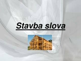 Stavba slova