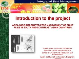 Introduction to the project  AREA-WIDE INTEGRATED PEST MANAGEMENT OF FRUIT FLIES IN SOUTH AND SOUTHEAST ASIAN COUNTRIES