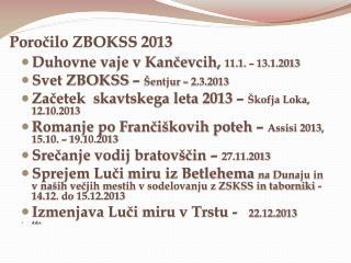Poročilo ZBOKSS 2013
