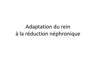 Adaptation du rein  � la r�duction n�phronique