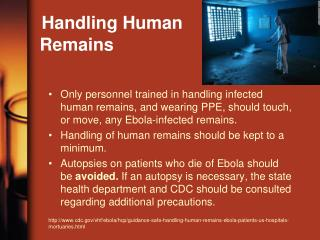 Handling Human    Remains