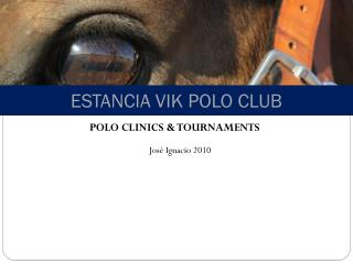 ESTANCIA VIK POLO CLUB