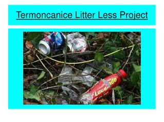 Termoncanice Litter Less Project