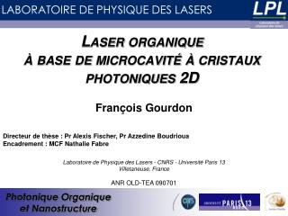 Laser organique  à base de microcavité à cristaux photoniques 2D