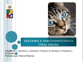 Leucemia e inmunodeficiencia viral felina