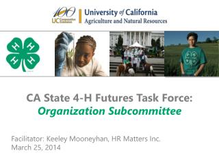 CA State 4-H Futures Task Force: Organization Subcommittee