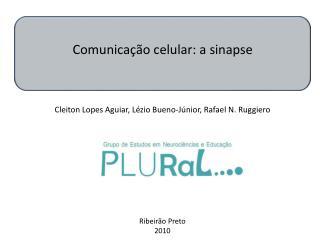 Comunicação celular: a sinapse