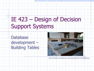 IE 423 – Design of Decision Support Systems