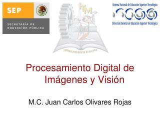 Procesamiento Digital de Imágenes y Visión