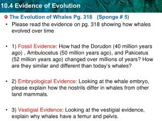 The Evolution of Whales Pg. 318   (Sponge # 5)