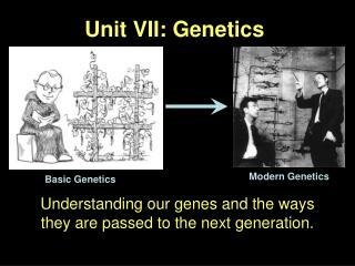 Unit VII: Genetics