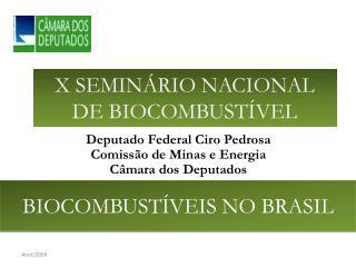 X SEMINÁRIO NACIONAL DE BIOCOMBUSTÍVEL