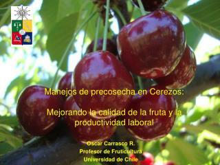 Oscar Carrasco R.  Profesor de Fruticultura Universidad de Chile
