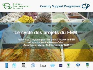 Le cycle des projets du FEM