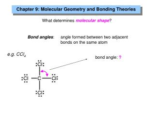 What determines  molecular shape ?