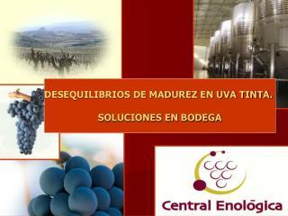 DESEQUILIBRIOS DE MADUREZ EN UVA TINTA.  SOLUCIONES EN BODEGA