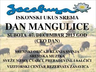 DAN-MANGULICE-2013