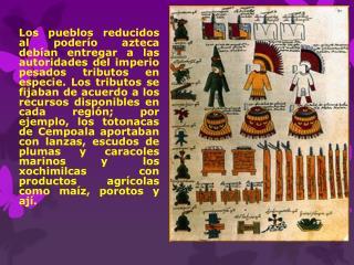 La Organización  Azteca