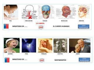 Publicidad Educativa  M.R.