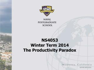 NS4053  Winter Term 2014 The Productivity Paradox